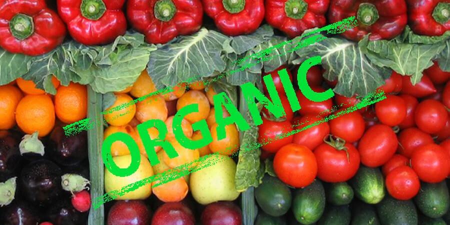 Как выбрать безопасную и качественную органическую продукцию?